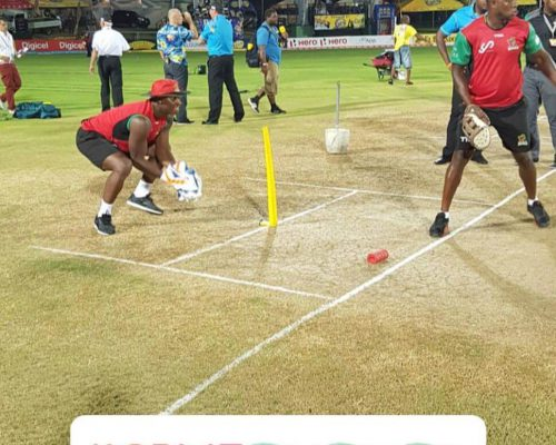 Don Cricket Ltd (20)